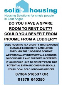 Solo Housing poster